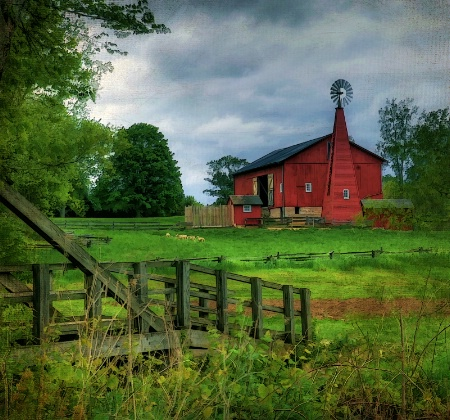 Across the Pasture
