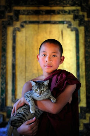 The Monk And Cat