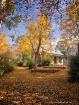 Autumn at Daylesf...