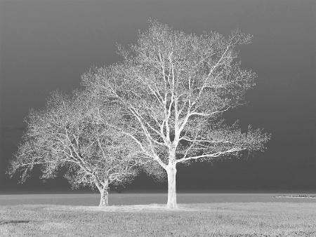 Eerie on Erie