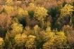 PD 2 landscape 1 ...