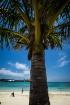 Clearwater Beach,...