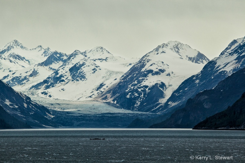 Glacier Bay National Park No. 4 - ID: 14509687 © Kerry L. Stewart