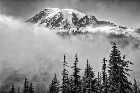 Mount Rainier and Fog; Black and White