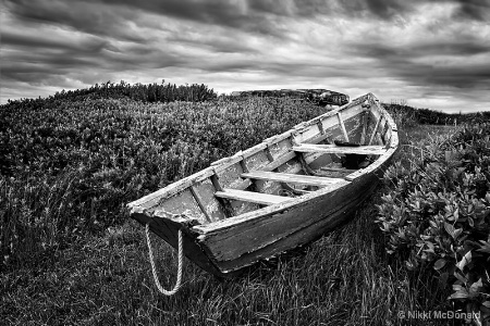 Rowboat at Prospect Point, bw