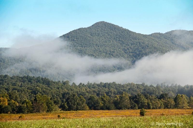 Morning Fog - ID: 14541364 © Terry Jennings