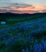 Kittitas Valley S...