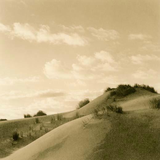 Eel River Dune #3 - ID: 14556963 © Joan E. Bowers