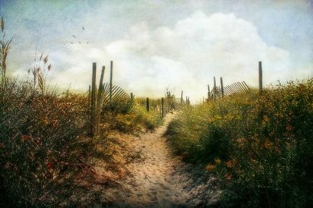 Summer Pathway