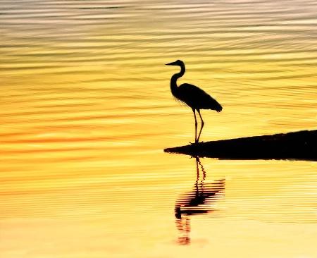 Sunset Stillness