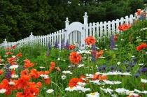 Garden in Camden, Maine