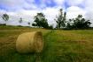Landscrape...