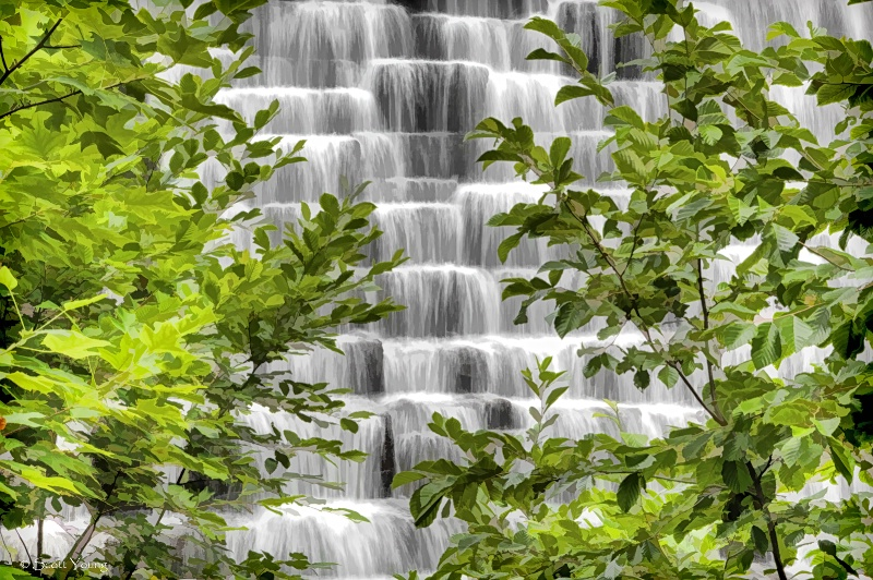 Otter Creek Dam; Blue Ridge Parkway, Va. - ID: 14567529 © Richard S. Young