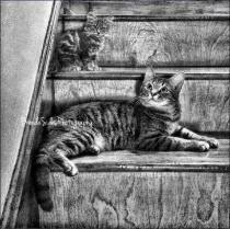 ~Keeping a Watchful Eye~