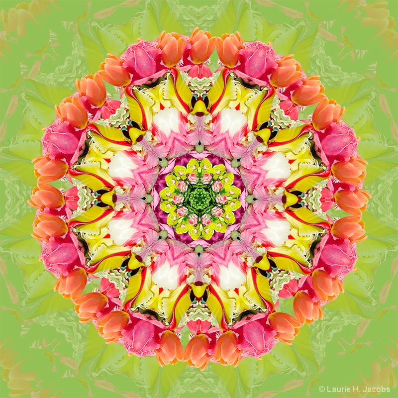 Kaleidoscope #3 - ID: 14583409 © Laurie H. Jacobs