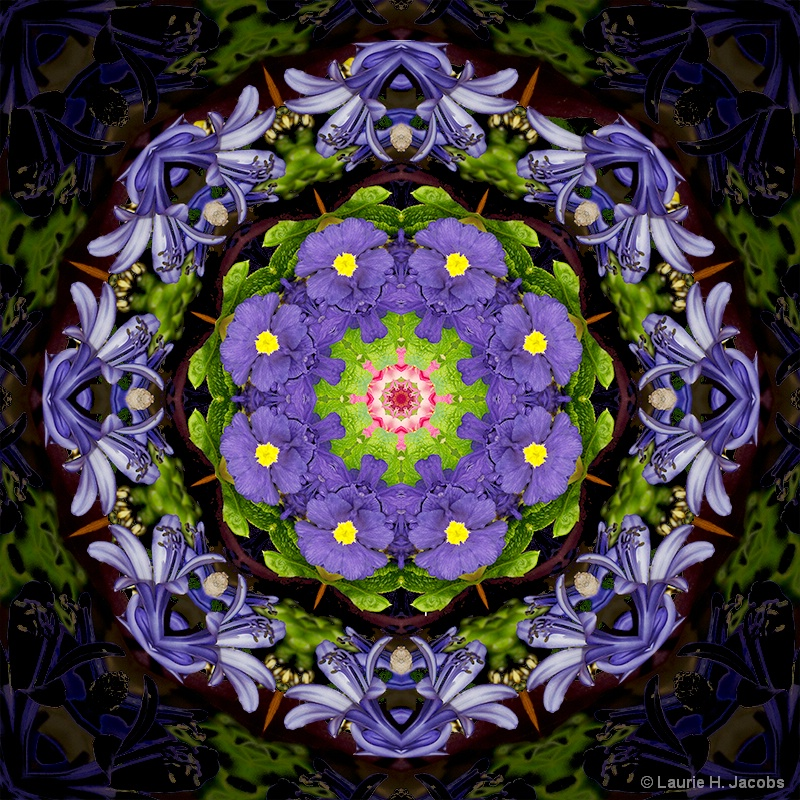 Kaleidoscope #1 - ID: 14583410 © Laurie H. Jacobs