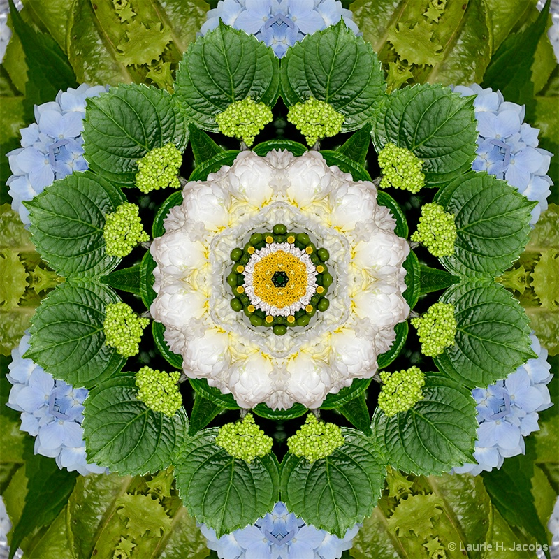 Kaleidoscope #18 - ID: 14583415 © Laurie H. Jacobs