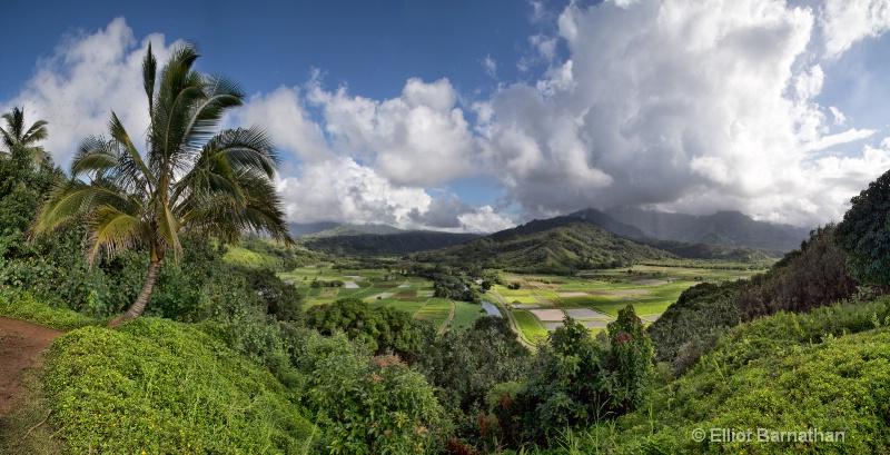 Kauai 1 - ID: 14586824 © Elliot S. Barnathan