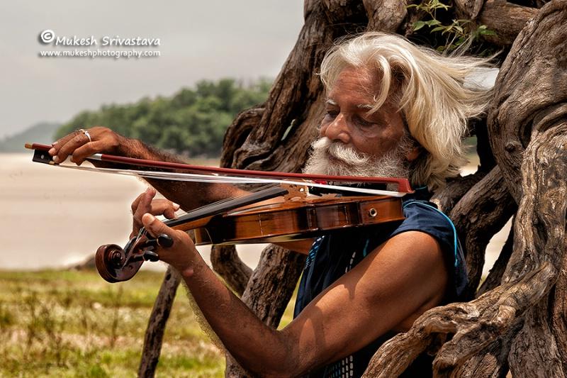 Violinist-2