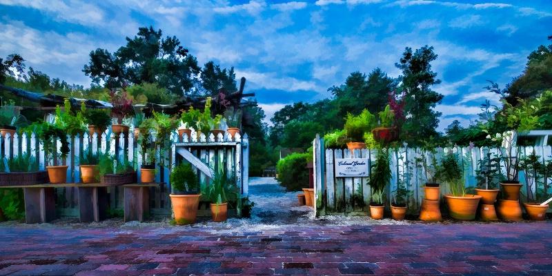Flower Pots, Williamsburg, VA