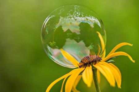 Gazebo in a Bubble
