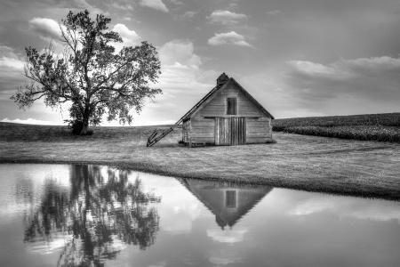 Grain Barn - Lone Tree
