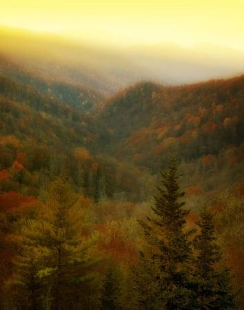 Night Falls on Autumn