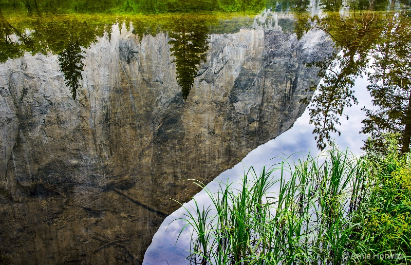 Reflections:  Rockface and Trees