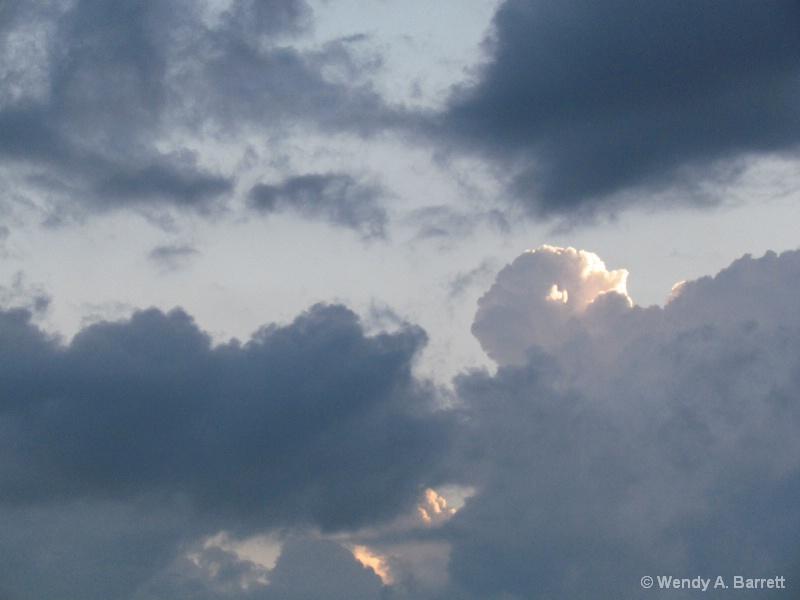 White Buffalo Head - ID: 14624684 © Wendy A. Barrett