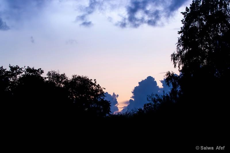 Sunset Shape