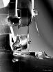Solar-PBY Catalin...