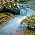 2Skinny Dip Creek - ID: 14642374 © Zelia F. Frick