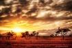 Sunrise - a new d...