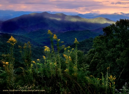 Evening in the Smoky Mountains