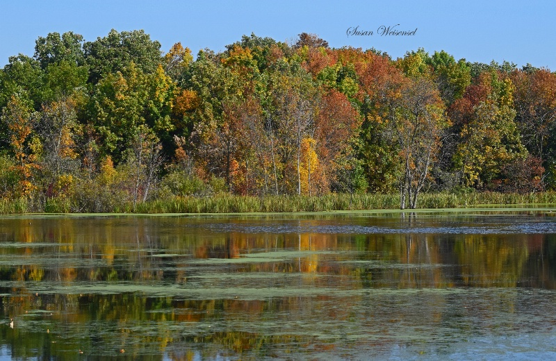 Early Fall Reflections