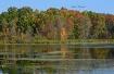 Early Fall Reflec...