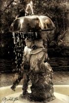 Please Share My Umbrella...