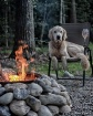 Chilling by Fire....