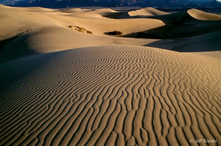 Sand Dunes,Spring Death Valley National Park