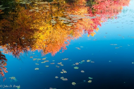 Reflections of Autumn #3