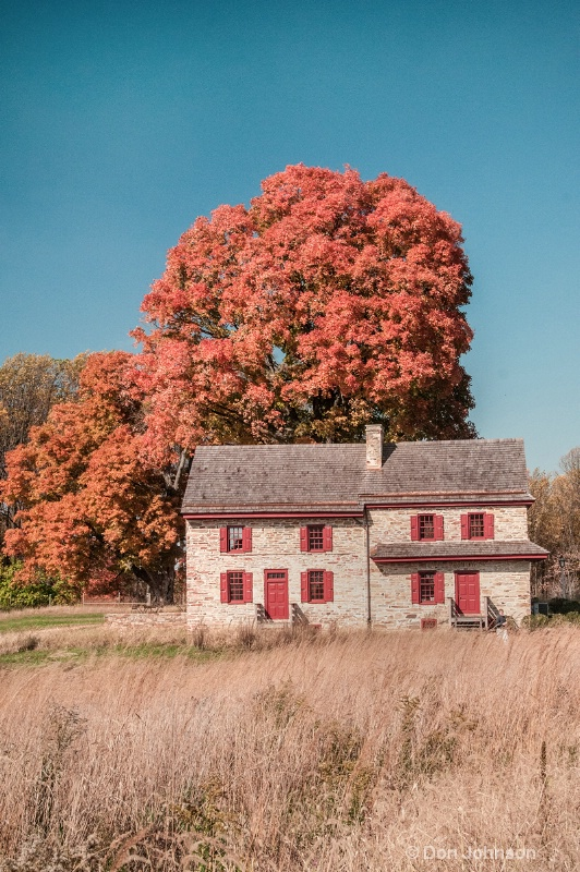 Fall Tree and Stone House 239