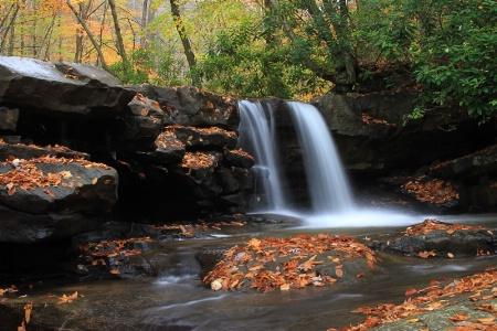 Fallen Leaves at Jonathan Falls