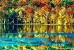 Fall Color at Rad...