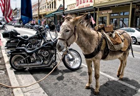 Alternative Forms of Transportation