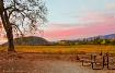 Napa Valley Viney...