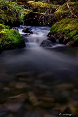 Goat Creek