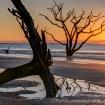 Boneyard Beach Su...