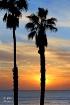 San Clemente Suns...