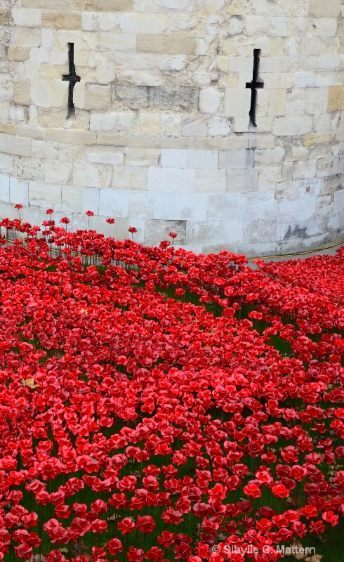 November 11 at the Tower - ID: 14756975 © Sibylle G. Mattern