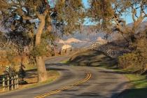 Happy Canyon Road (Compression, Half way back)